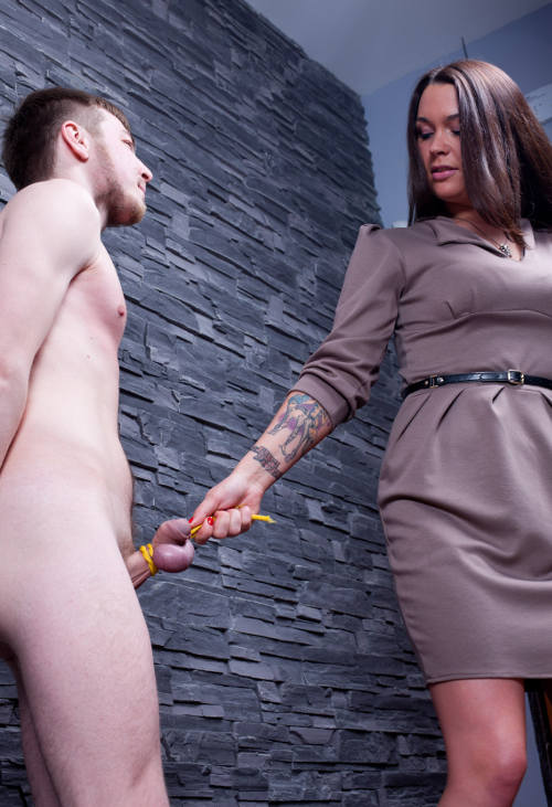 submissive cock ball torture